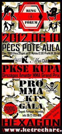 2012.Június 10-én :  Ring - A Fórum / Hexagon - Pro MMA Gála - Pécsett