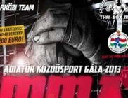 Amatőr Küzdősport Gála 2013