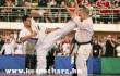 Kyokushin Karate EB